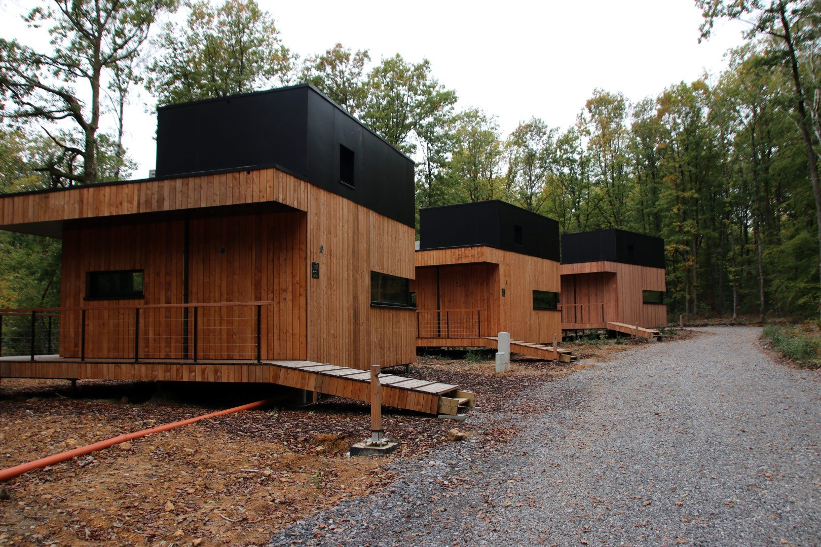 Forest Cubes - nieuwe chalets anno 2020